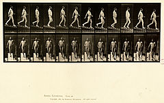 Animal locomotion. Plate 113 (Boston Public Library).jpg