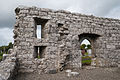Annaghdown Abbey of St. John the Baptist de Cella Parva Windows and Doorway 2010 09 12.jpg