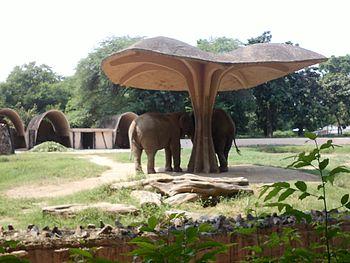 Apurvgupta delhi zoo.jpg