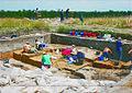 Archaeological Site Santul Mare, Pecica, Romania 2008.jpg