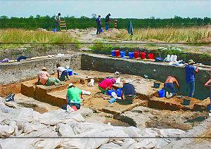 Ziridava - Archaeological Site Şanţul Mare, Pecica, Romania, 2008