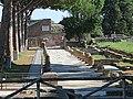 Area archeologica di Ostia Antica - panoramio (33).jpg