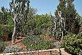 Argotti gardens-IMG 1409.jpg