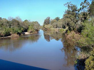 Pando Creek - Image: Arroyo Pando at Pando