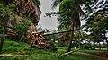 Artillery in Saipan.jpg