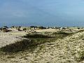 Aruba Sand Dunes (2891480796).jpg