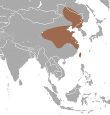 Asian Lesser White-toothed Shrew area.png