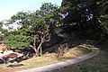 Atalho de acessos Bairro Vila Santana - Av dos Imigrantes Italianos Abril 2010. - panoramio.jpg