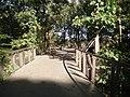 Atlanta Canopy Walk.jpg