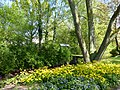 Bad Sassendorf – Frühling im Kurpark - panoramio.jpg