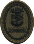 Service dress blue sleeve insignia