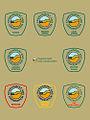 Badges in frame.jpg