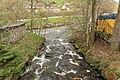 Baiersbronn - Im Looch - Ilgenbach + Murg 01 ies.jpg