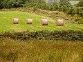 Bales of hay - geograph.org.uk - 531654.jpg