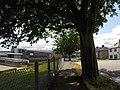 Bangor, UK - panoramio (157).jpg