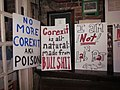 Bastille Tumble 2010 Mollys Signs.JPG