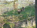 Bee Hives at Robridding - geograph.org.uk - 315545.jpg