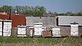 Beehives. Hwy 8, West St. Paul (506119) (26262451546).jpg