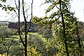 Beilstein Farnersberg from the East 20071014.jpg
