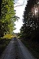 Beim Forsthaus Segel - panoramio (7).jpg