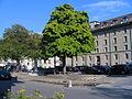 BernMatteMuehlenplatz.JPG