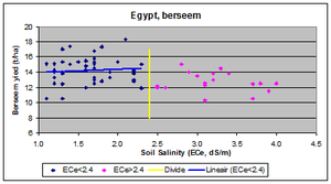 Soil salinity - Image: Berseem egypt