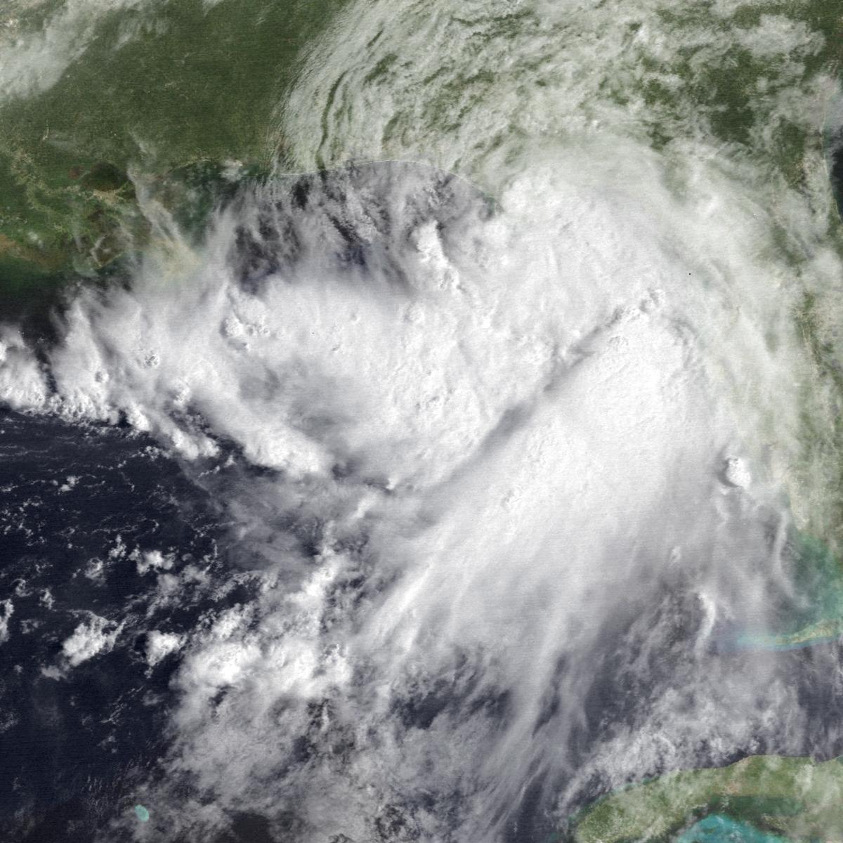 Tropical Storm Beryl (1994) - Wikipedia
