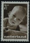 Besnyo1947-7.png