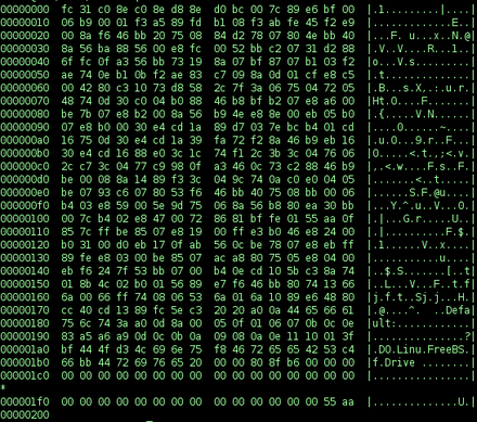 A hex dump of an executable real mode loader Binary executable file2.png