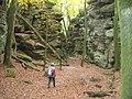 Bizarre Felsenlandschaft - Teufelsschlucht (Bizarre Rocky Landscape - Devil's Gorge) - geo.hlipp.de - 14733.jpg