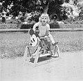 Blond kindje op Mickey Mouse hobbelpaard in Suriname, Bestanddeelnr 252-6875.jpg