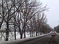 Bohorodychne, Donetsk Oblast, Ukraine, 84136 - panoramio (2).jpg