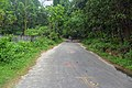 Botanical Garden Road, near SRDI (01).jpg