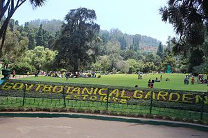 Government Botanical Gardens, Ooty - Botanical Garden in Ooty, Tamil Nadu