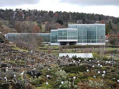Botanischer Garten Tübingen - panoramio.jpg
