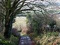 Botterham Lane, Swindon, Staffordshire - geograph.org.uk - 641681.jpg