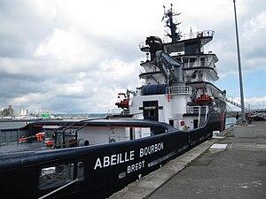 Brest2012 Abeille Bourbon (1).JPG