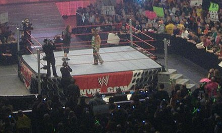 Hart confronts Michaels on January 4, 2010 Bret vs HBK Jan 4 2010.jpg