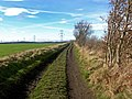 Bridleway from Carlton called Wood Lane - geograph.org.uk - 1172224.jpg