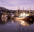 Brixham Fishing Fleet - geograph.org.uk - 1650747.jpg