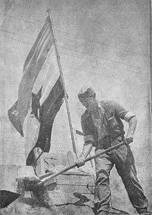 Foto von einem Mann, der mit einer Schaufel gräbt