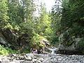 Bukovynski vodospady (2).JPG