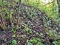 Bunker in Saarfels.jpg