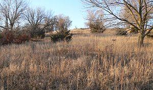 National Register of Historic Places listings in Nance County, Nebraska - Image: Burkett site (Nance County, Nebraska) (2)