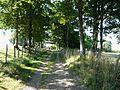 Busserolles GR4 entre Chareyroux et Forêt (1).JPG