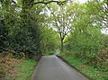 Byles Green - passing through the common - geograph.org.uk - 790581.jpg