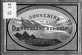 CH-NB-Souvenir de l'Oberland bernois-nbdig-18216-page001.tif