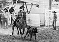 Calf Roping Cowgirl (16192298446).jpg