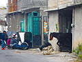 Calle 21 de Marzo, Xochimilco.JPG