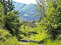 Cambiaticcio-paesaggio 09.jpg